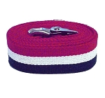 Economy Gait Belt Patriot Stripe